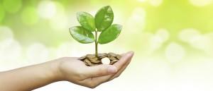 funding-plant-grow-crop